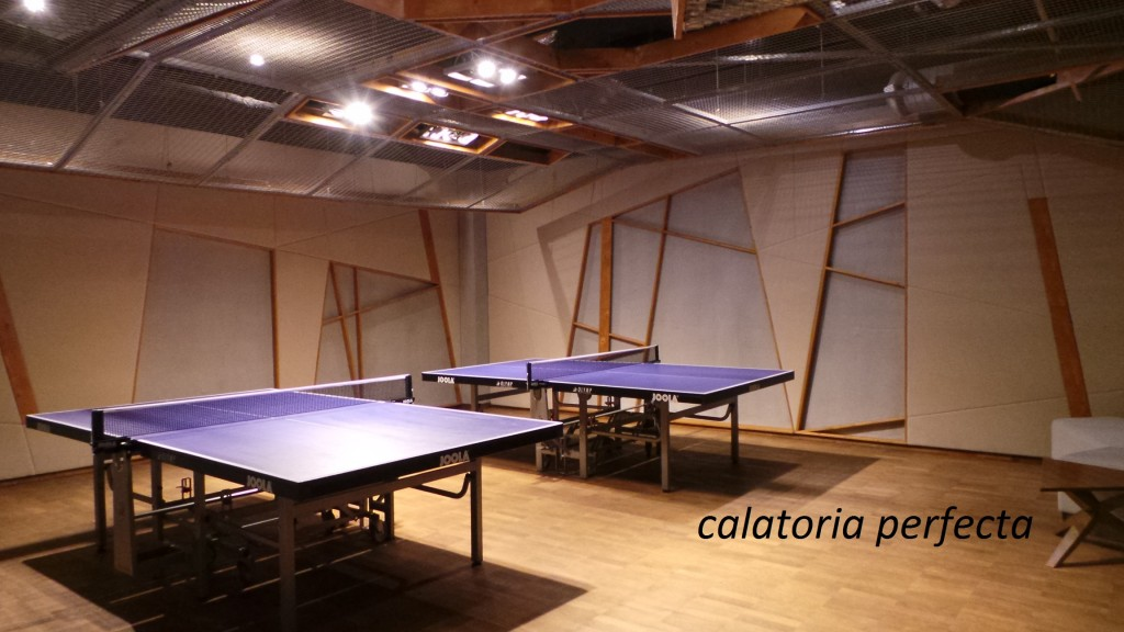 mesele de ping pong