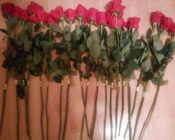Povesti cu flori