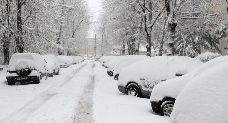Iarna nu-i ca vara! Dar daca erau ei…asa ar fi fost!