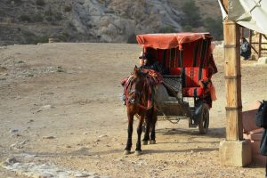 transport public in Petra