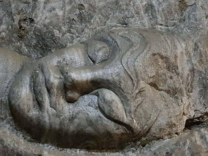 frumoasa adormita in sare