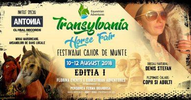Transylvania Horse Fair