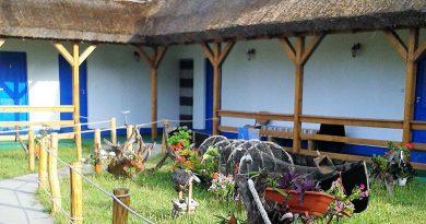 Casa Alb Albastra, minunea din Delta Dunarii
